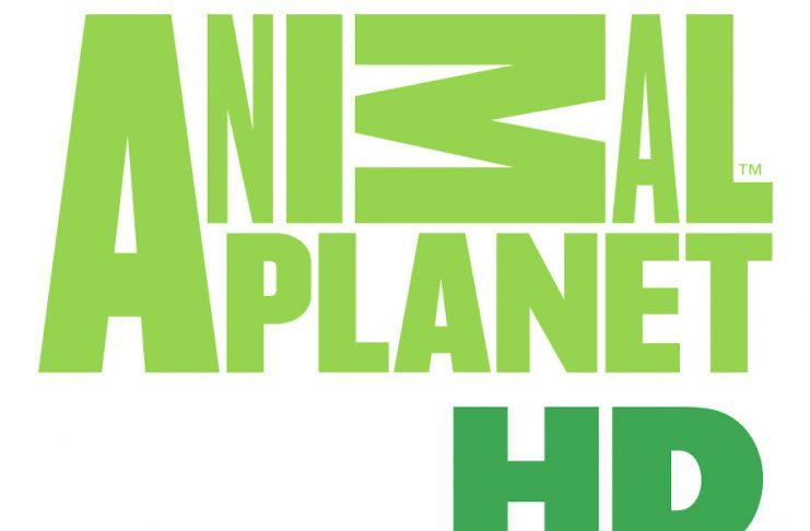 animal-planet-hd-claro-tv